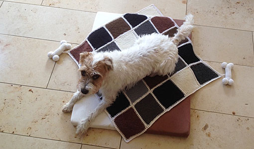 Hundedecke-Knochen